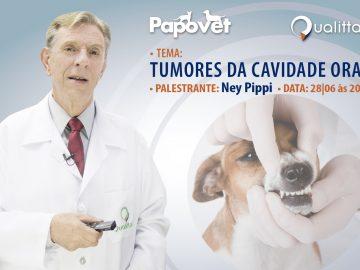 Ney Pippi